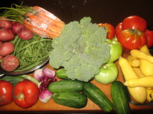 fresh vegetables from the farmer's market
